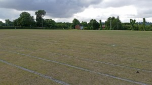 Rugby pitch (Medium)